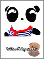 BABOTHEPOODIE