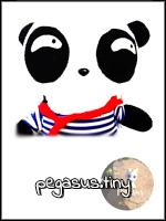 PEGASUS_TINY